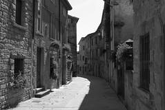Cassio - Strada Romea (Alberto Cameroni) Tags: leica blackandwhite bw bn biancoenero x1 emiliaromagna cassio francigena viafrancigena stradaromea