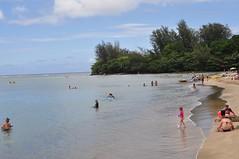 Hanalei Beach (glennia) Tags: beach hawaii sand kauai hanalei hanaleisandfest