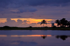 Flooded Salt Ponds at sunset (Emily Miller Kauai) Tags: park sunset reflection beach clouds hawaii pond salt lagoon kauai hanapepe