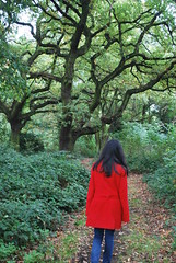 Little Red (partofchloesworldx) Tags: park trees red cold tree green london love nature girl fairytale landscape freedom trapped scenery pattern spirit path walk coat free eerie follow figure mysterious greenery haunting swirl alive lead bitter redridinghood fairytales redcoat enclosed