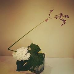 Donna's ikebana