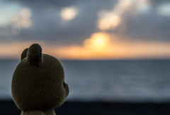 Petit ours' Sunset (imaginativenewworld) Tags: bear sunset sea mer beach del oso la mar playa petits crépuscule plage petit ours ourson crepúsculo arce osito aldea malins ocáso