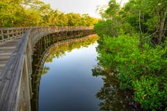 Reflections (ap0013) Tags: reflection water florida fl preserve robinson bradenton bradentonfl bradentonflorida robinsonpreserve
