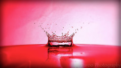 Corona de agua - Crown of water (Daroo Photography) Tags: light red luz water canon creativity photography is rojo agua focus flickr power with shot flash drop powershot iso filter corona precision crown 100 mm gota splash fotografia creatividad 43 quickly daro foco filtro sprinkled salpicadura salpicado 11600 rapidez f34 daroo presicion sx500 sx500is 431290 daroophotography