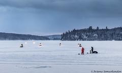 Lake of Bays - Canadian Eh!! (digithief) Tags: d500 nikon ontario forzenlake icefishing lakeofbays snow snowmobiles winter dwight canada ca