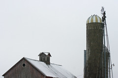 the birds have it! (WORLDS APART PHOTO) Tags: barn silo windmills windmillwednesday agriculture farm foggy winter wisconsin cupola roof outdoors countryside