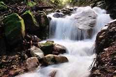 Aubrey Creek (J-Fish) Tags: aubreycreek creek sanbornpark water saratoga california d300s 1685mmvr 1685mmf3556gvr