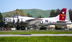 1944 Boeing B-17G N5017N 8649 landing Concord Airport California. 2017. (planepics43) Tags: boeing b17 n5017n ww2 concordairport ccr 8649 aluminumovercast nuttreeairport eaa claytoneddy california crash cessna cockpit collingsfoundation maintenance weather landing livermoreairport airport airshow 17crossfeed
