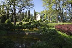 _DSC0816 (Riccardo Q.) Tags: parcosegurtàtulipani places parco altreparolechiave fiori tulipani segurtà