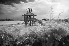 Treehouse (Cris Rose) Tags: park leica trees shadow blackandwhite grass playground digital zeiss 35mm landscape kent kid natural bokeh f14 voigtlander rangefinder wideangle treehouse sharp nokton m9