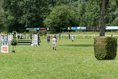 DSC05968_s (AndiP66) Tags: horse macro sports sport schweiz switzerland jumping sony july aarau sp di if tage juli alpha tamron concours pferd aargau equestrian derby f28 ld horsejumping 70200mm wettbewerb 2014 springen kantonaargau pferdesport springreiten andreaspeters pferdespringen 77m2 a77ii ilca77m2 77ii 77markii slta77ii cantonargovia