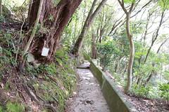 (GenJapan1986) Tags: japan island  shiga 25mm 2014    nikond600 zf2  distagont225
