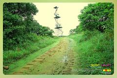 Silent Valley---------------11 (Binoy Marickal) Tags: india green tourism nature water rain kerala mala palakkad evergreenforest treaking silentvalleynationalpark nilgirihills mannarkkad mukkali kuzhur indiabinoymarickal