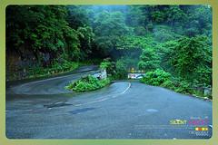 Silent Valley---------------03 (Binoy Marickal) Tags: tourism nature kerala mala palakkad evergreenforest silentvalleynationalpark nilgirihills mannarkkad mukkali kuzhur indiabinoymarickal