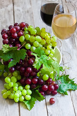 Green and red grape (Speleolog) Tags: wood autumn red food plant green fall nature beautiful closeup fruit dessert leaf vineyard juicy big still healthy berry branch purple natural wine sweet cluster farming seasonal harvest grow vivid vine tasty fresh tendril winery growth crop bunch organic agriculture grape grapevine freshness ripe selective ingredient