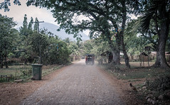 Road (jmhuttun) Tags: nikon philippines puertoprincesa palawan d800 irawan mimaropa
