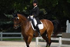 Jessica Stark and Freestyle partner, Ultra Sonic. (Tackshots) Tags: illinois wayne lamplight horseshow equestrian dressage
