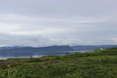 Hesteyri, Hornstrandir Nature Reserve (Westfjords)