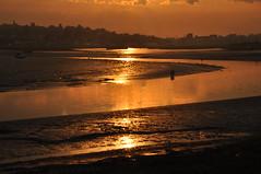 Sunset (amanda.parker377) Tags: sunset birds estuary essex heybridgebasin riverblackwater