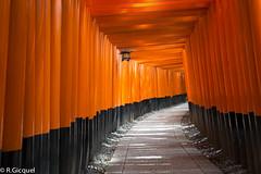 Fushimi Inari Taisha (Kyoto) (renan4) Tags: trip travel red black japan temple nikon kyoto gate asia inari nikkor tori japon renan taisha d800 fushimi 1635mm coridor gicquel renan4