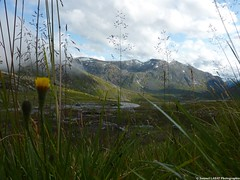 (Samuel Labat photographie) Tags: sun love nature beautiful photo photographie picture portfolio paysage flikr