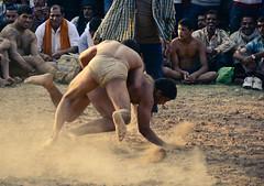 Indian wrestling | Kushti ([s e l v i n]) Tags: india men sports fight village muscle wrestling battle fighting punjab combat wrestle indianmen kushti indianwrestling pehlwan selvin indiankushtiwrestling