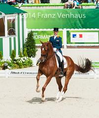 140826_Dressage_GP_2_982.jpg (FranzVenhaus) Tags: horses france fei normandie fra caen weg dressage