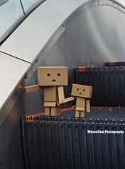 DANBO (WovenTam) Tags: love toys danbo danboard minidanboard