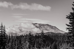 Mount St. Helens, Bear Meadows, Washington, August 2014 (Steve G. Bisig Photography) Tags: summer blackandwhite usa mountains monochrome clouds forest volcano washington unitedstates framed pacificnorthwest northamerica mountsthelens lewiscounty mountsthelensnationalvolcanicmonument giffordpinchotnationalforest bearmeadows