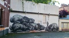 ROA / Tempelhof 18-05-2014 (Ferdinand 'Ferre' Feys) Tags: streetart graffiti belgium belgique belgi urbanart graff ghent gent gand graffitiart roa artdelarue urbanarte canvas9000