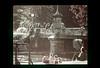 ss10-40 (ndpa / s. lundeen, archivist) Tags: park bridge color film boston 1971 footbridge massachusetts nick slide slideshow 1970s publicgarden bostonians bostonian dewolf nickdewolf photographbynickdewolf slideshow10