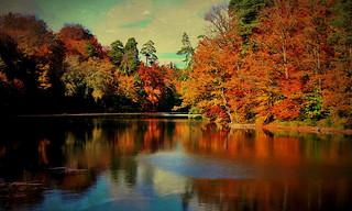 Autumn at the Lake, 73070/3996