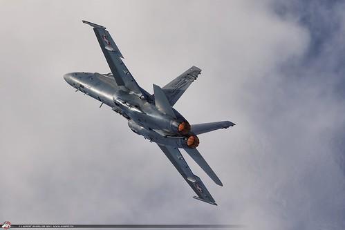 Hornet Metal