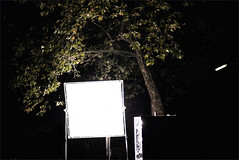 light my night (polomar) Tags: camera leica light tree germany lens deutschland licht flickr 14 cologne kln scene spot subject mp 50 common summilux baum asph reflector beleuchtung ort sdstadt reflektor filmdreh polomar