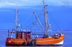 Fishing Boat near the harbor (MaiGoede) Tags: harbor nikon weser fishingboat hafen bremerhaven d800 fischerboot wesermarsch krabbenkutter fischerhafen butjadingen fedderwardersiel wesermündung nikond800