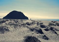 Morro Rock (Harold Litwiler, Poppy Big Oak Photography) Tags: ocean california blue beautiful rock coast afternoon pacific morrobay westcoast morrorock sanddunes hwy1 sanluisobispocounty 2014 d7100