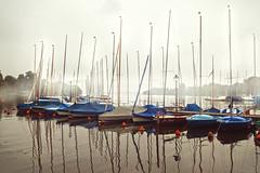 Schiffe, Auenalster - Hamburg, Germany (annehufnagl) Tags: boot nebel hamburg boote anleger hafen alster schiff schiffe morgens hansestadt nebelig trbeswetter ausenalster