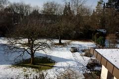 Winter garden (VIII) (dididumm) Tags: schnee trees winter snow building tree garden meadow wiese bume garten baum gebude burgfrieden