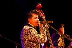 Rebel Cats (Ever Pirata) Tags: vivian teatro rebel cats cultura blumenthal mxico rockabilly 2015 mimamamemima udg setlistme guadalajara gdl
