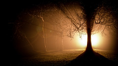Sunlight.jpg (___INFINITY___) Tags: 6d canon darrenwright dazza1040 dot eos flash infinity light night strobist sunlight