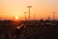 Fahrdienstleitergehilfennachtschichtendkontrolle (Lilongwe2007) Tags: hamburg eisenbahn veddel rangierbahnhof sonnenaufgang tauben vögel güterzüge wagen hafenbahn gleise lampen
