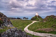 Llanddwyn Island Lighthouse (MF65) Tags: sea lighthouse wales landscape dawn coast unitedkingdom d800 2014 tiltshift newborough nikon24mm