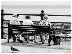 Bench Tales - Listening (Savlet) Tags: street sea people blackandwhite bw southwales bench blackwhite porthcawl panasoniclumix midglamorgan micro43 microfourthirds lumixgx1 lumixgxvario35100mm