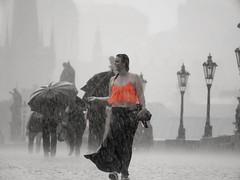 Oh... Is it raining? (PixPep) Tags: rain prague charlesbridge checkrepublic funnymoment absolutegoldenmasterpiece