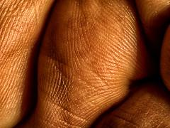 Hand #1 Remastered (Ralph Runknagel (sehnerv19)) Tags: monochrome closeup nik bodyparts biology closerlook dfine raynoxdcr250 colorefexpro