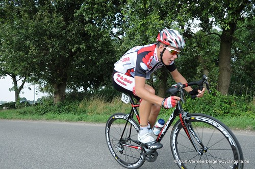 Geel Oosterlo  (145)