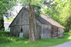 Old Barn (pegase1972) Tags: qc québec canada quebec deschambault grange barn explore explored