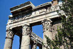 """Roman Forum • <a style=""""font-size:0.8em;"""" href=""""http://www.flickr.com/photos/89679026@N00/14601047023/"""" target=""""_blank"""">View on Flickr</a>"""