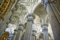 Catedral de Granada (España) - Granada Cathedral (Spain) (ipomar47) Tags: españa spain pentax catedral granada siloe neoclásico egas k10d neoclassicist