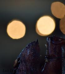 parrillada de cerdo (Luis Diaz Devesa) Tags: espaa food chicken cooking animal dinner pig spain europa rice beef comida bbq meat pork galicia galiza ribs carne pontevedra cochino puerco marrano amil chancho moraa luisdiazdevesa moraaamil